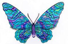 New Zealand Paua Shell Butterfly