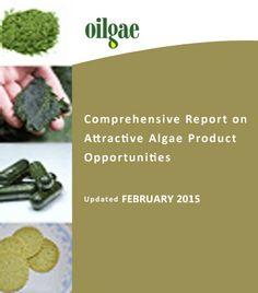 Algae Oil Extraction – Expeller/Press, Solvent Extraction, Supercritical Fluid Extractions - Oilgae - Oil from Algae