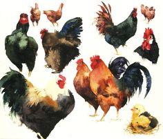 Chicken Sampler
