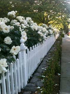 picket fence love...