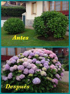 Salinas(Asturias) 2 de Mayo y 1 de Julio.
