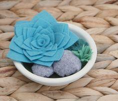 Jardín de fieltro suculento plato  suculentas del por CuriousBloom