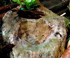 hollow boulder