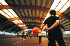 Alunos que fazem mais exercício físico têm melhores resultados escolares | zenemotion®