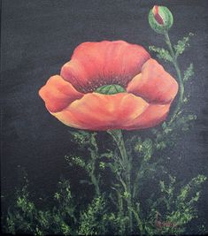 Best of IAM: Poppies  by Priscilla Hauser, MDA Come on and join Priscilla's Painting Party!  With her dynamic personality, along with her talented teaching skills, you'll feel like you're right there in class with her.  Grab a canvas, get your supplies out, and come paint along with us.  You'll have a great time.