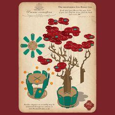 Prunus Bonsai Tree instructions