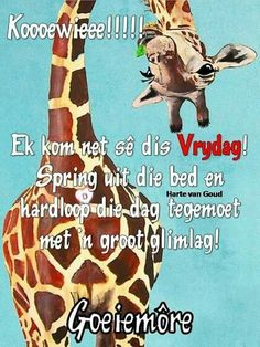 Goeie More, Friday Humor, Morning Messages, Afrikaans, Happy Friday, Good Morning, Songs, Christmas Ornaments, Holiday Decor