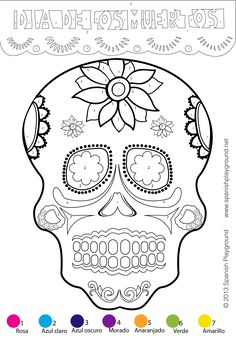Color-by-number calavera