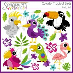 Escape to a tropical paradise with this colorful birds clipart set. Included are…