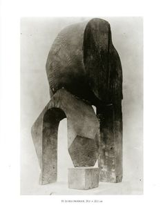 Around 1907 Brancusi began to take photographs of his sculptures. The photographs he produced were usually out of focus, over or underexposed, scratched, or spotty. However, Brancusi insisted that the photographs he took of his sculptures were the only photographs to truly represent his work.