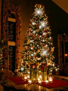 Hermosos paisajes: Pino de Navidad