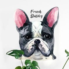 French Bulldog Dog Lovers Watercolor Enchanting Wall Art Decal 10.40 Follow us for the Latest and Trending items for Dog Lovers ❤ FREE Shipping worldwide ✈ #doglovers #petlovers #doggroomers #dogbreeds #doglovergifts #petowners #pawprint #pawsome #dogmom #dog #dogs #doglover #doglife #doggy #doglove #puppies #doggie #doggies #dogprints