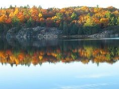 Sky, leaves and lake in Kilarney Prov Park - my photo just can't capture the full beauty of it!