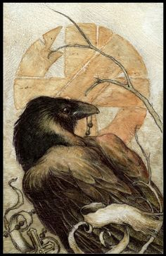 raven studio ~ ballpoint pen and watercolor ~ by jeremy hush Crow Art, Raven Art, Bird Art, Art And Illustration, Illustrations, Jackdaw, Crows Ravens, Pen And Watercolor, Fauna