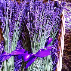 Local lavender at Pike Place Market Downtown Seattle, Seattle Area, Lavenders Blue Dilly Dilly, South Lake Union, Seattle Neighborhoods, Pike Place Market, Lavender Blue, Emerald City, Farmers Market