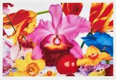 Icelandic Lava Plane by Marc Quinn at Manifold Editions LLP - Printed Editions - Ref 43221 Marc Quinn, Art Fund, Flower Artists, Galleries In London, Affordable Art Fair, National Portrait Gallery, Contemporary Artists, New Art, Paintings