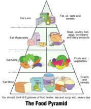 Chinese food pyramid picture
