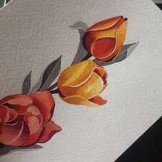 I#tulips #sashaunisex #watercolor