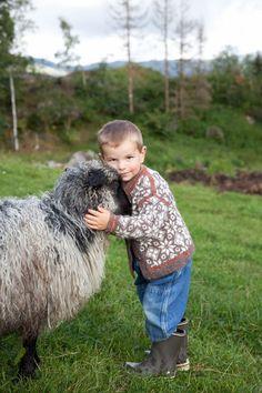 KOFTER_Guttekofte_6_319513 Lamb, Goats, Animals, Animales, Animaux, Animal, Animais, Baby Sheep, Goat