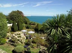 Garden on the Isle of Wight
