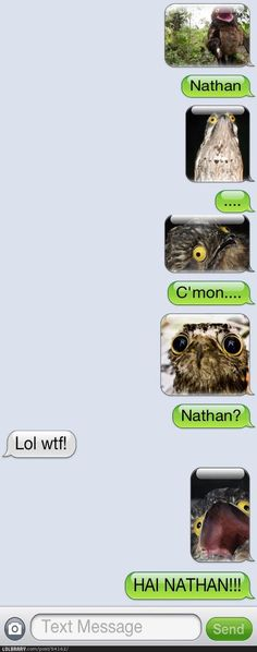 HAI NATHAN!!!