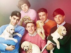 one direction wallpaper - Google Search