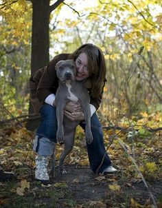 From Denver, With Love - A pit bull escapes Denver to find love, trust and a new best friend