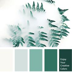 Ideas Bedroom Green Mint Shades For 2019 Green Color Pallete, Mint Color Palettes, Green Paint Colors, Green Color Schemes, Mint Green Paints, Aesthetic Header, Forest Green Color, Creative Colour, Bedroom Green