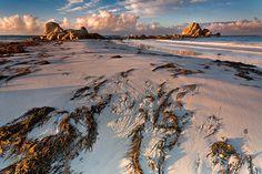 Picnic Rocks, Mt. William National Park, Tasmania - AUSTRALIA