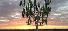 """Résultat de recherche d'images pour """"l'arbre à vent"""""""