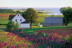 Prince Edward Island, Canada.