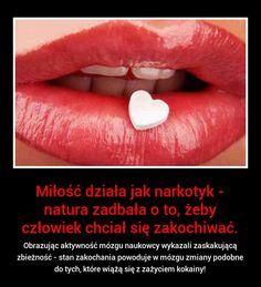 Czy wiecie, że milość działa jak narkotyk