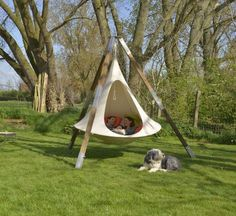 The Double Sized Hanging Tent All Colors Pictured Above The 5.9ft Double is big enough for 2 adults to share! Call it a tree hammock or hanging tent, but they are cool.