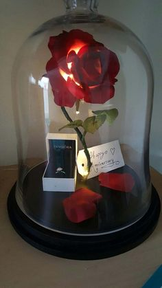Picnic Ideas Discover Enchanted Rose Life-Size Beauty and the Beast Enchanted Rose Rose in Glass Cloche Bell Jar Flower Lamp Light Up Rose LED Lights - 13 Enchanted Rose Life-Size Beauty and the Beast Enchanted Rose Enchanted Rose, Origami Rose, Cute Gifts, Diy Gifts, Money Bouquet, Beauty And Beast Wedding, Beauty And The Beast Flower, Flower Lamp, Romantic Surprise