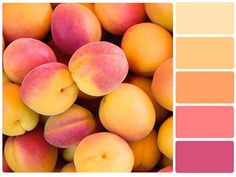 Peach Color Palette: Choosing Color Schemes {The Basics of Combining Color} from Denise in Bloom. Colour Pallette, Color Palate, Colour Schemes, Color Combos, Color Patterns, Orange Palette, Good Color Combinations, Color Trends, Paleta Pantone