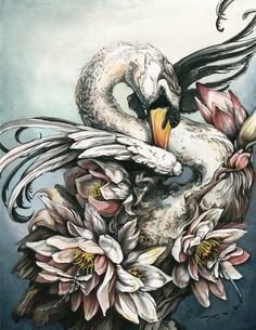 SWAN  Ink, watercolor, marker, acrylic. 11 x 14 in. 2011 - Christina Mrozik