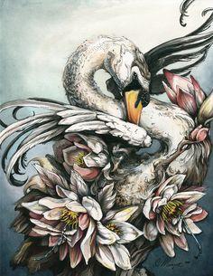 SWAN  Ink, watercolor, marker, acrylic. 11 x 14 in. 2011 - Christina Mrozik