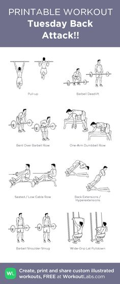 Tuesday Back Attack!!: my visual workout created at WorkoutLabs.com • Click through to customize and download as a FREE PDF! #customworkout