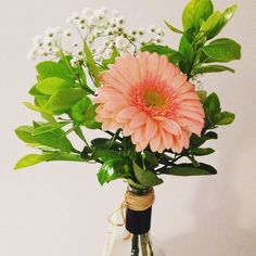 Para encantar o sábado! #floweroftheday #arranjofloral #plantinhas #decoração #oitominhocas