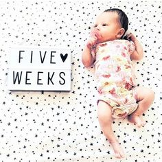 @hollydramey 👌💞😍 just toooo cute!! #milestone #babymilestones #lightbox #alittlelovelycompany