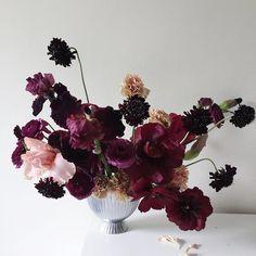 Scabiosa, ranunculus, carnation and bearded iris