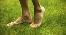GROUNDING.... is it the medicine so many are missing out on for? I do believe there is truth here... The Grounded | Walking Barefoot