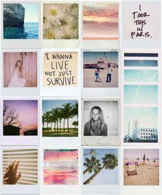 I want to live! Polaroid grid