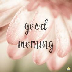 Good morning image for you. Beautiful Morning Messages, Good Morning Beautiful Flowers, Good Morning Messages, Good Morning Greetings, Good Morning Wishes, Good Morning Quotes, Beautiful Day, How To Have A Good Morning, Good Morning Picture