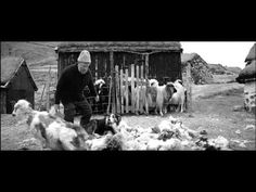 """Collywobble ad. Brilliant. Beautiful Irish song Mo Ghile Mear by Una Palliser. """"Colliewobble"""", the story of a solitary shepherd whose poor eyesight becomes obvious as he shears the sheep. Shot at the Faroe Island. Actual Faroese shepherd, Peter Andreas Petersen, along with border collie Jim, gather the sheep for shearing."""