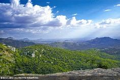 Chittoor's Horsley Hills touch the clouds - Times Of India