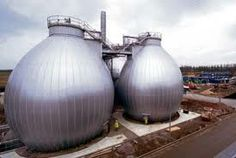 Egg shaped Biogas Reactors