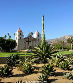 Agaves at the Santa Barbara Mission.