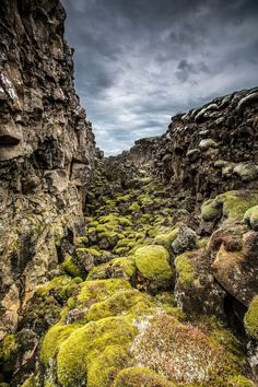 Thingvellir National Park - Where You Walk Between Two Continents / Iceland