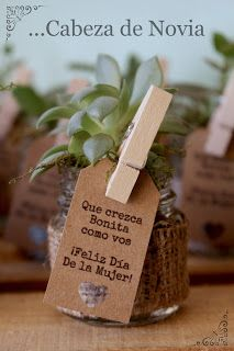 Suculentas: Un souvenir para toda la vida | ...Cabeza de novia Home Crafts, Diy And Crafts, Wedding Photography Tips, Cactus Y Suculentas, Cheap Gifts, Diy Planters, Planting Succulents, Flower Pots, Gift Ideas